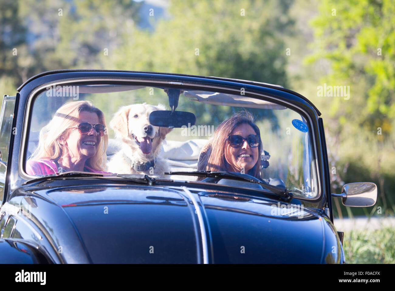 Two mature women, in convertible car, with dog, smiling - Stock Image