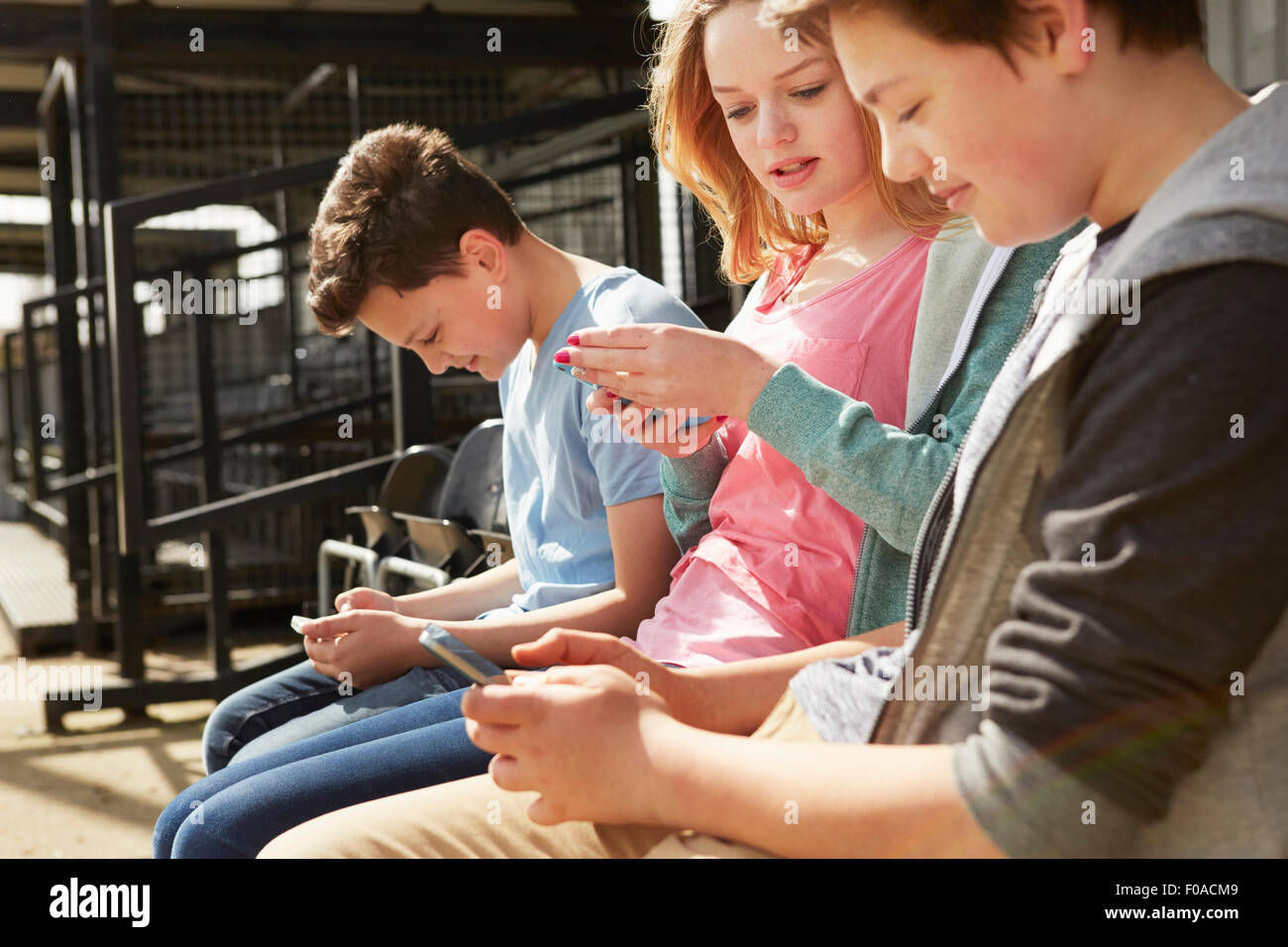 Four boys and girls reading smartphone texts in stadium stand - Stock Image