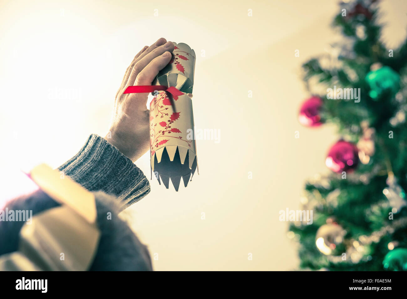 Person holding used christmas cracker - Stock Image