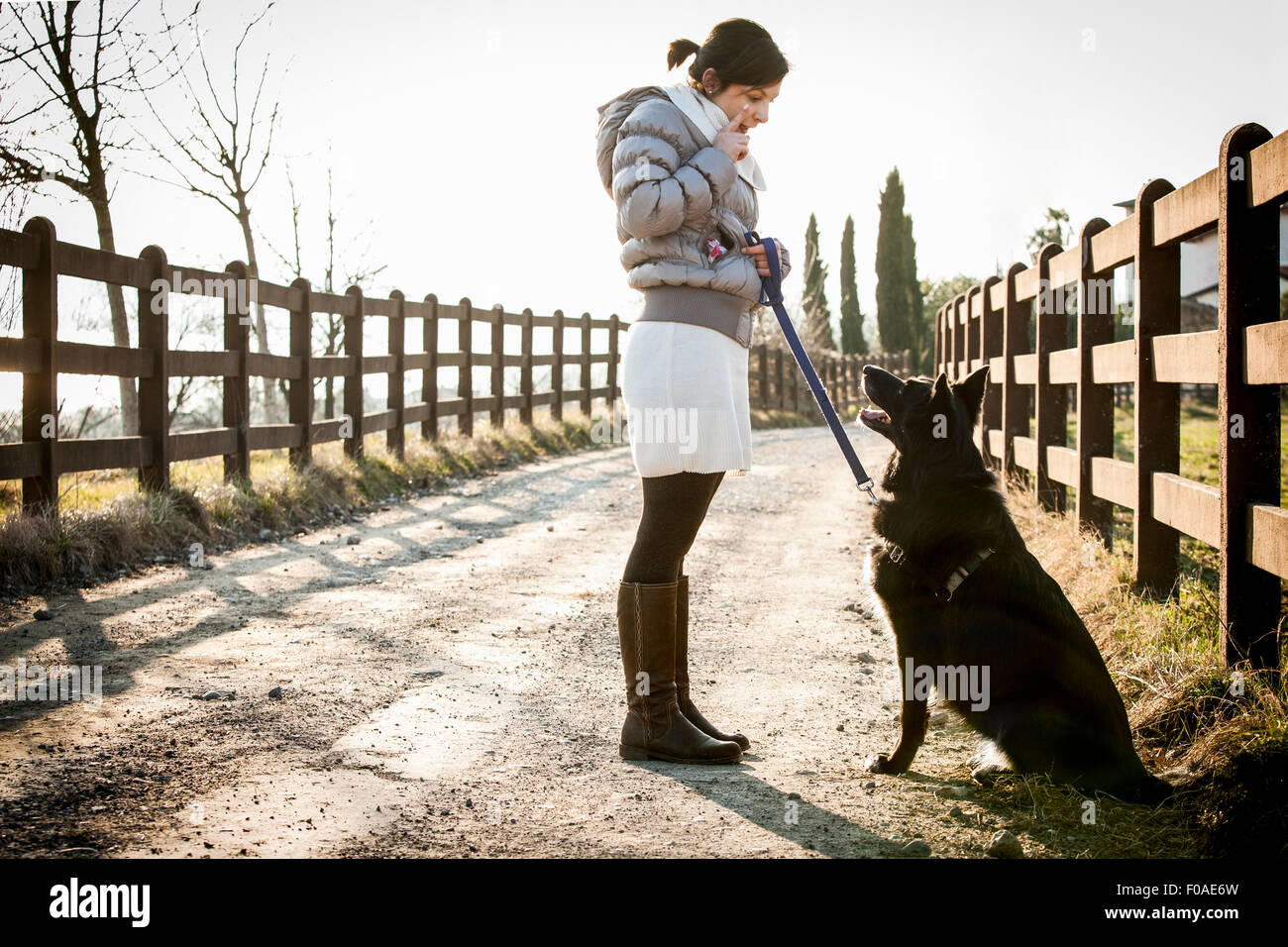 Mid adult woman training her dog to sit on rural road - Stock Image