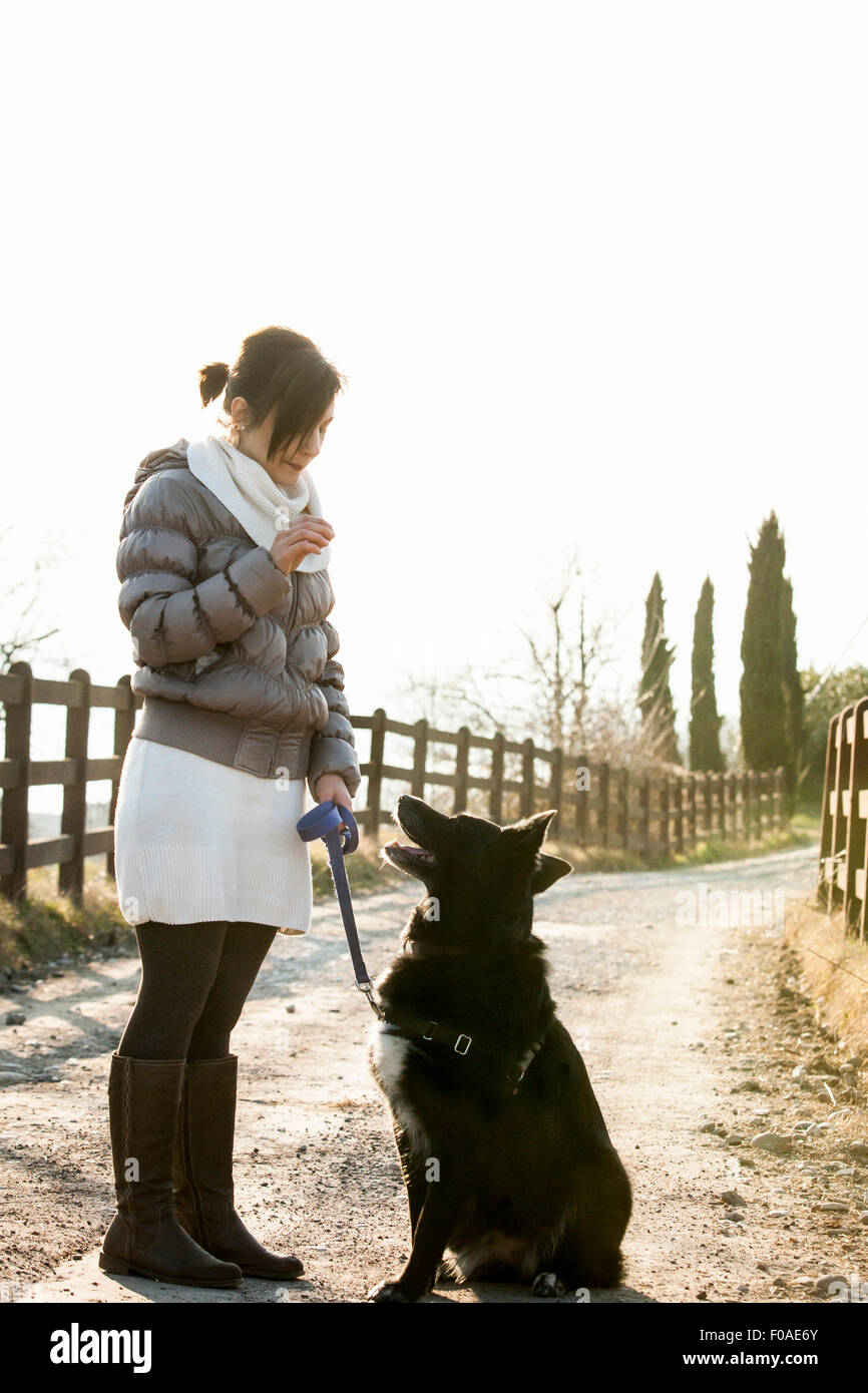 Obedience Stock Photos & Obedience Stock Images - Alamy