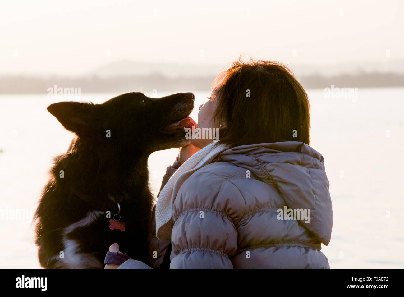 Dog licking mid adult womans face on lakeside - Stock Image