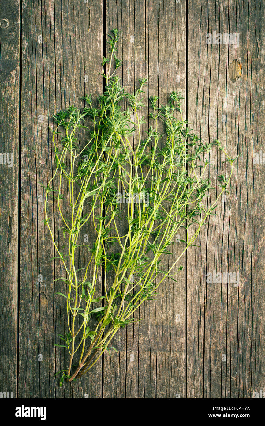 Fresh savory bunch on wooden background - Stock Image