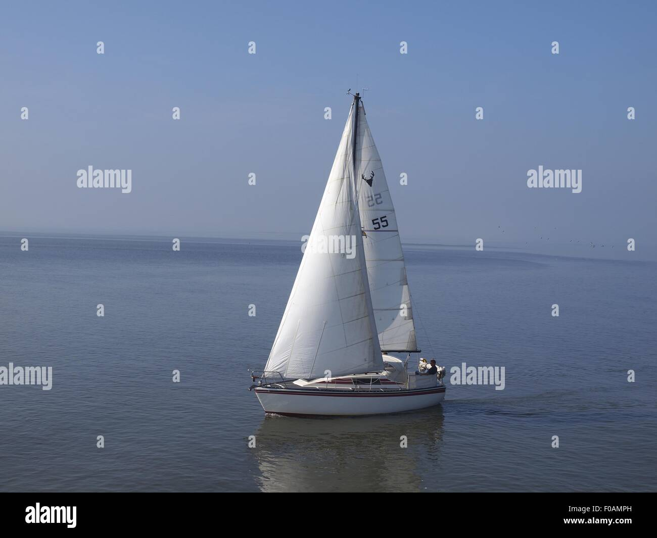Sailboat in sea at Spiekeroog, Lower Saxony, Germany - Stock Image