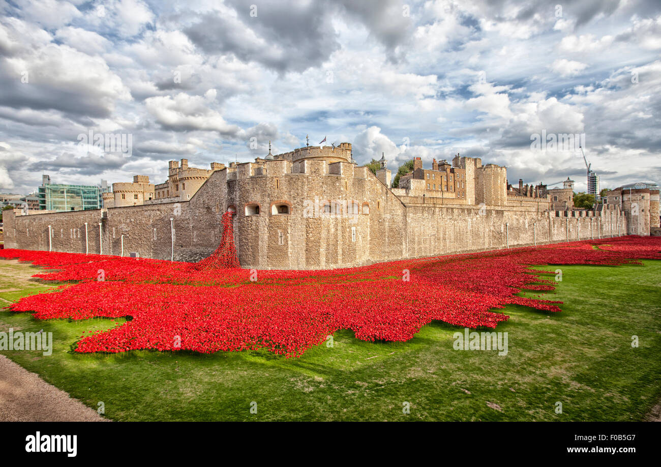 LONDON, UK - AUGUST 22, 2014 -  Some of the 888,246 ceramic poppies that commemorate the British and colonial military - Stock Image