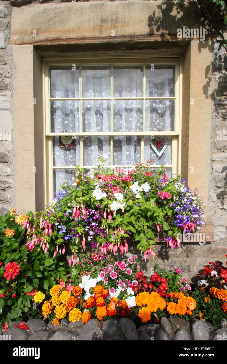 A window box festooned with flowering plants sits on a sill of a traditional stone cottage in the Peak District, - Stock Image