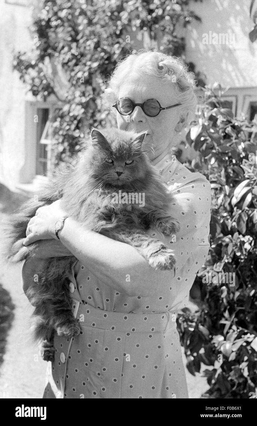 A senior woman holding a large cat Stock Photo