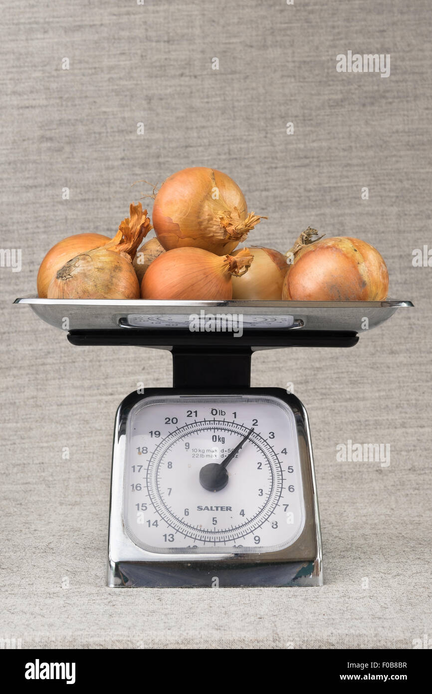 Two Pounds or One Kilo of Onions on a Traditional Set of Scales. - Stock Image