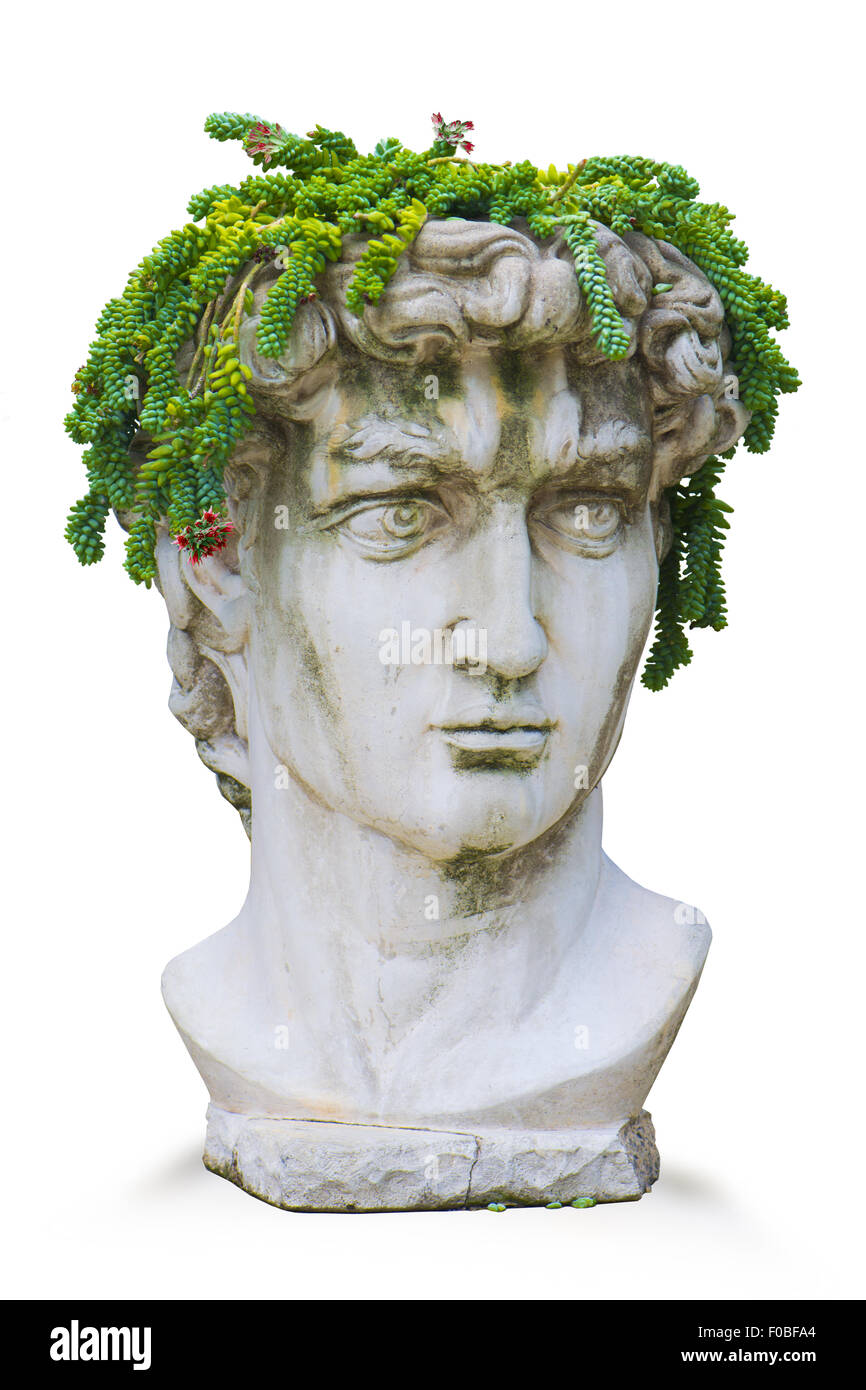 Replica of Michelangelo's Classic Roman God David Bust With Plant Headdress - Stock Image
