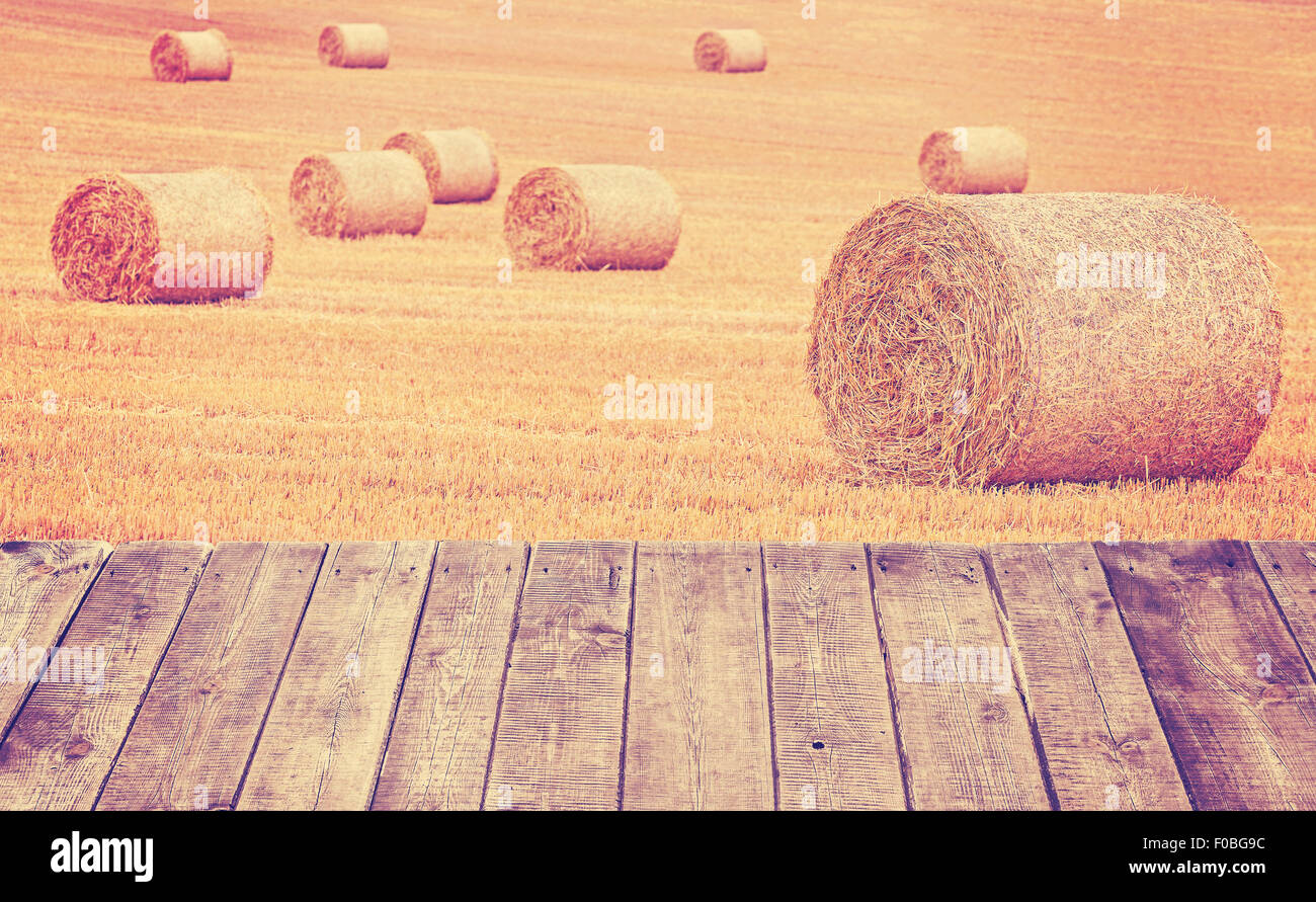 Vintage toned hay bales on a field with wooden boards. - Stock Image