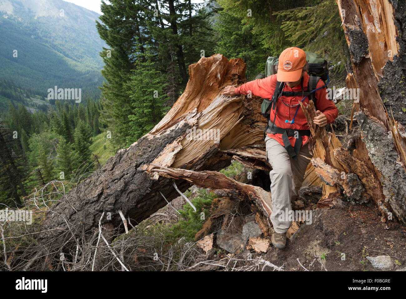 Aound Stock Photos & Aound Stock Images - Alamy