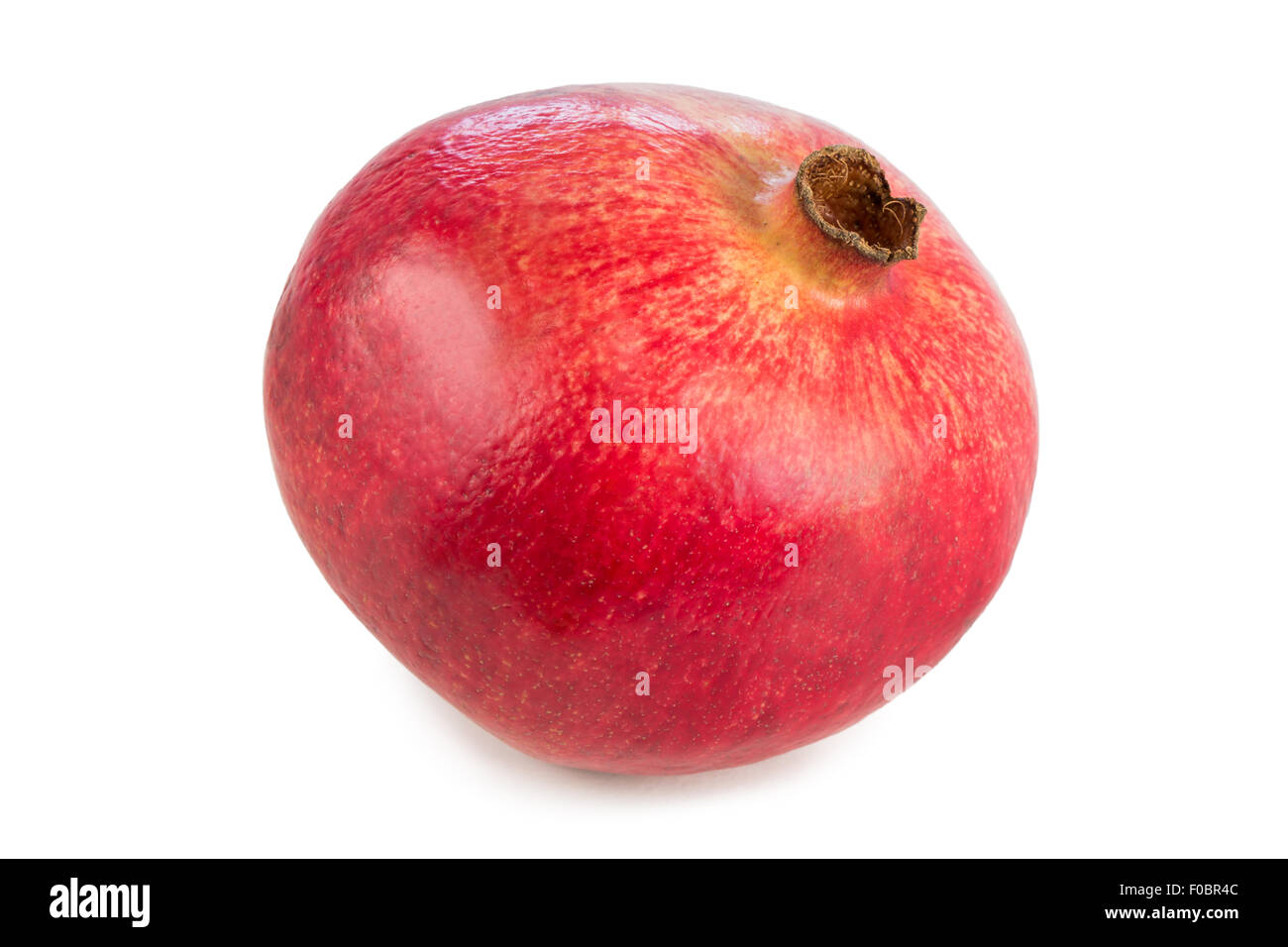 Close-up of a whole ripe pomegranate (Punica granatum) with a shadow, isolated on white background. - Stock Image
