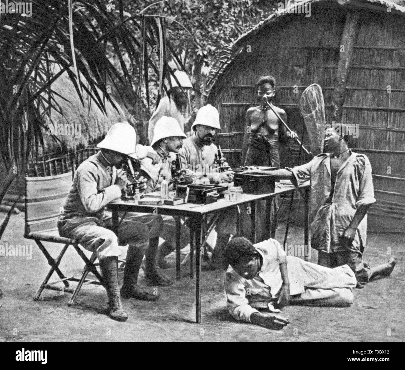 colonialism, Africa, white scientists doing microscopic analyses, early 20th century, 20th century, imperialism, - Stock Image