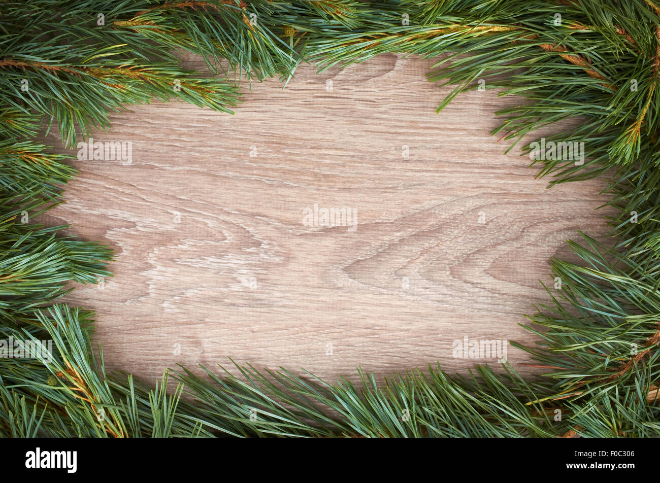 traditional pine tree christmas border decoration on a wood background