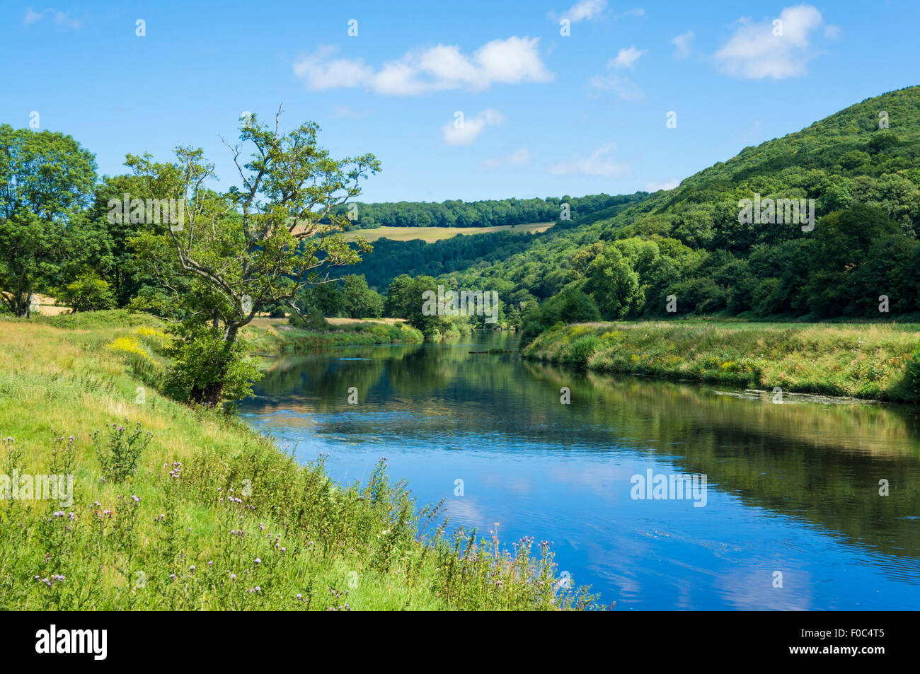 River Wye at Bigsweir, Wye Valley, Monmouthshire, Wales, UK, EU, Europe - Stock Image