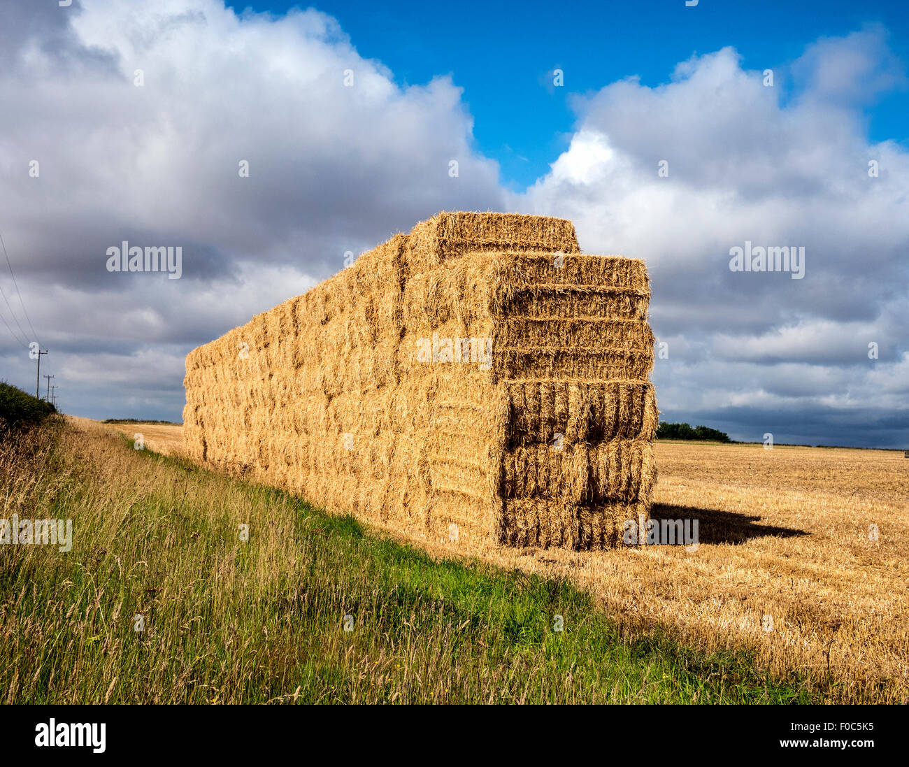 Stack of Straw Bales and wildlife field margin following Harvesting on Yorkshire Wolds UK - Stock Image