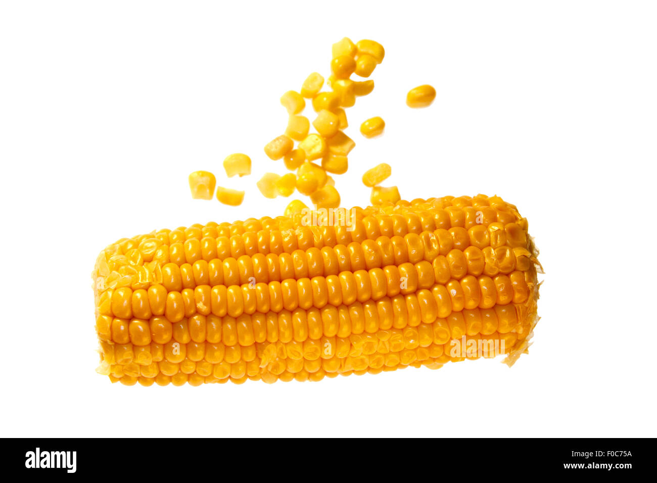 Maiskolben/ maize/ corn cob - Symbolbild Nahrungsmittel. Stock Photo