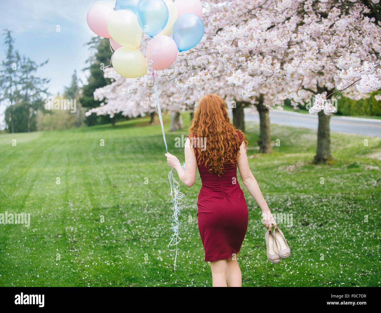 Rear view of young woman with long wavy red hair and bunch of balloons strolling in spring park - Stock Image