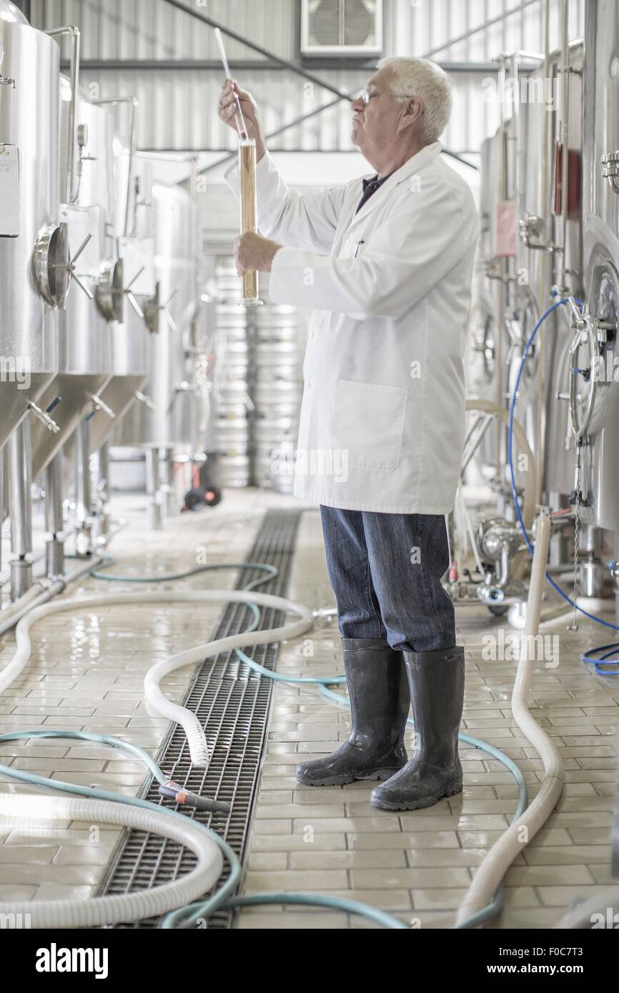 Brewer testing the beer in the brewery - Stock Image