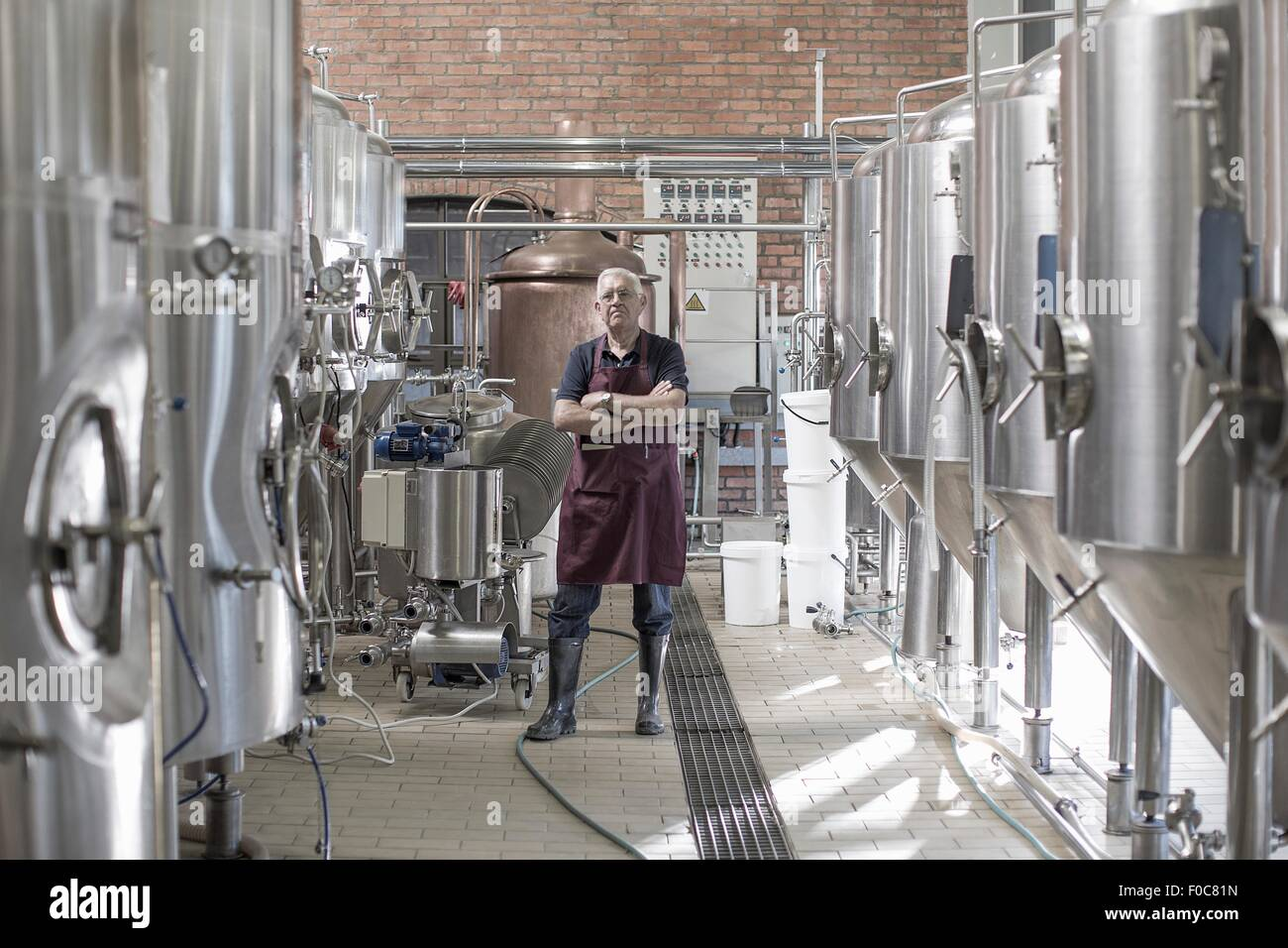 Portrait of brewer in brewery, standing next to stainless steel tanks - Stock Image