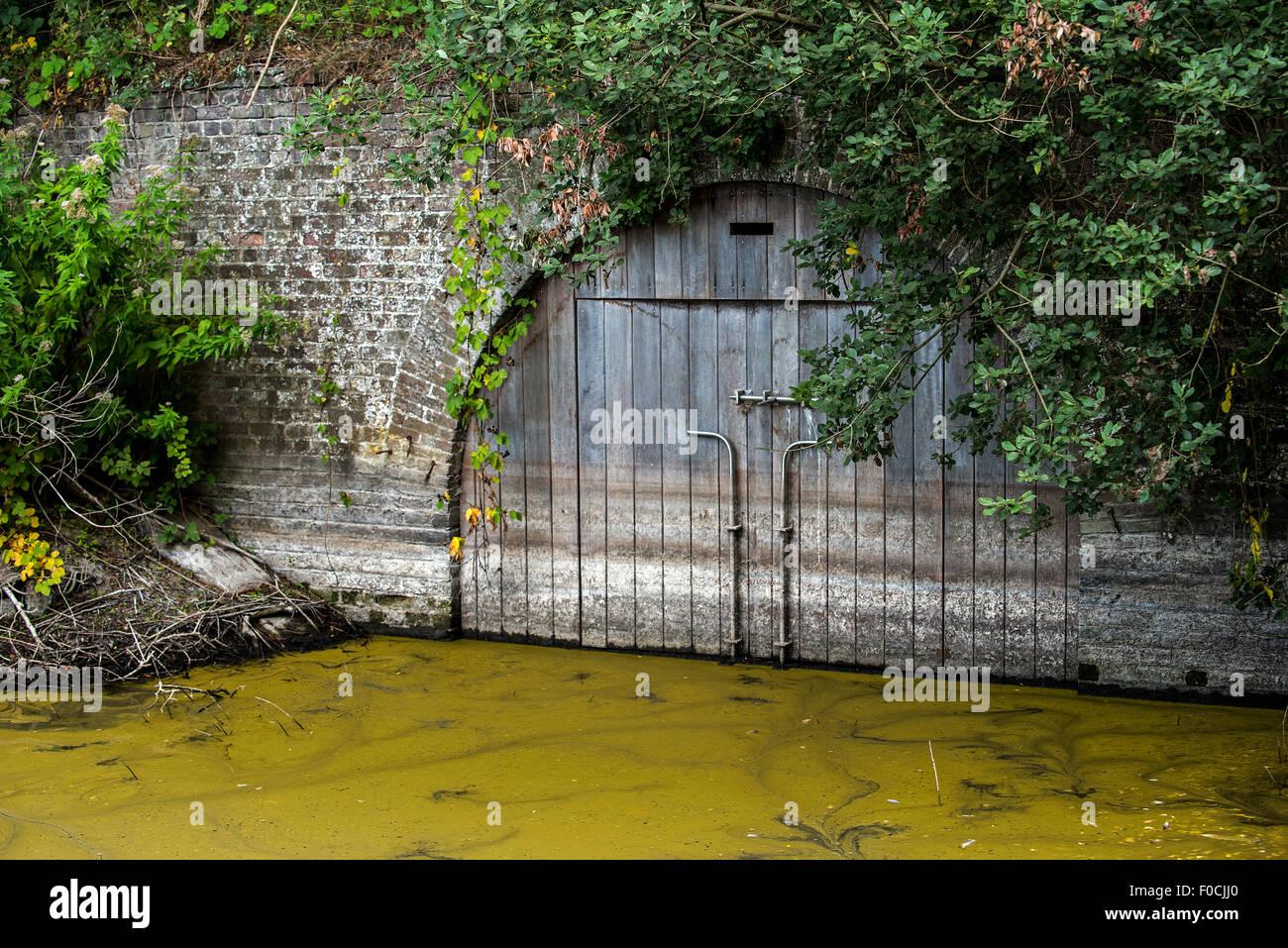 Locked wooden door of brick vault over stream, hibernation place for bats in nature reserve - Stock Image