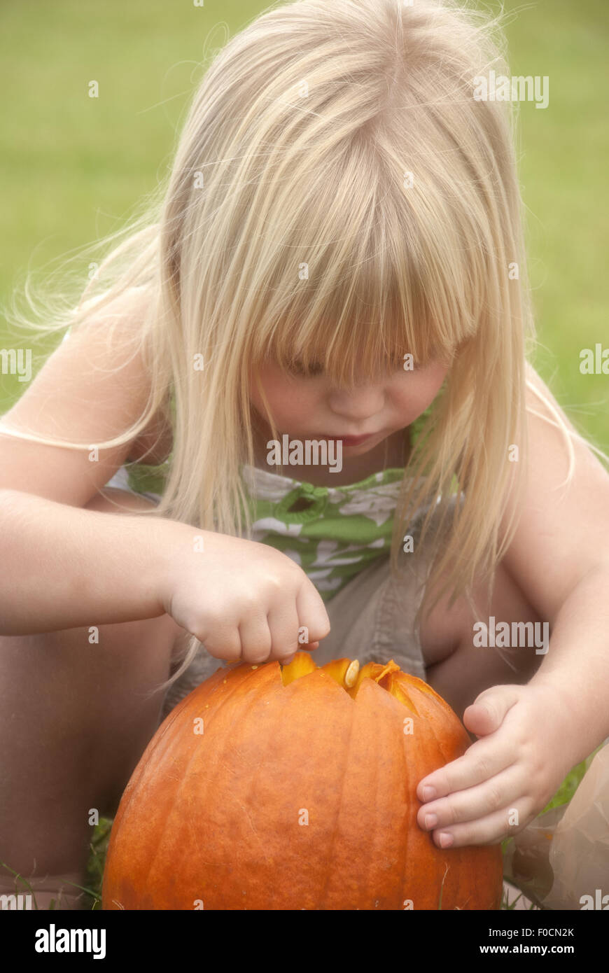 Little blonde girl getting a pumpkin ready to carve. - Stock Image