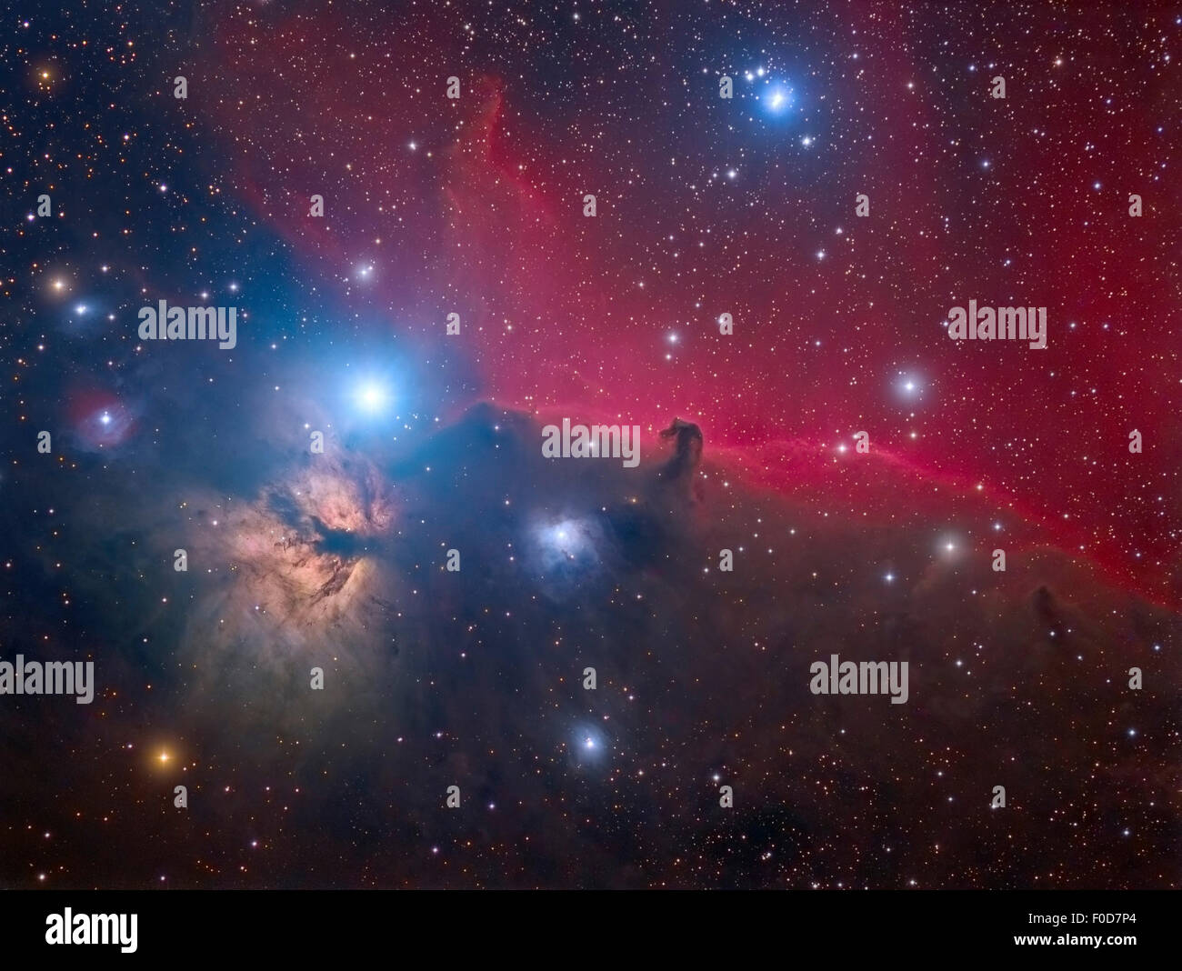 The Horsehead Nebula and Flame Nebula in the Orion constellation. - Stock Image