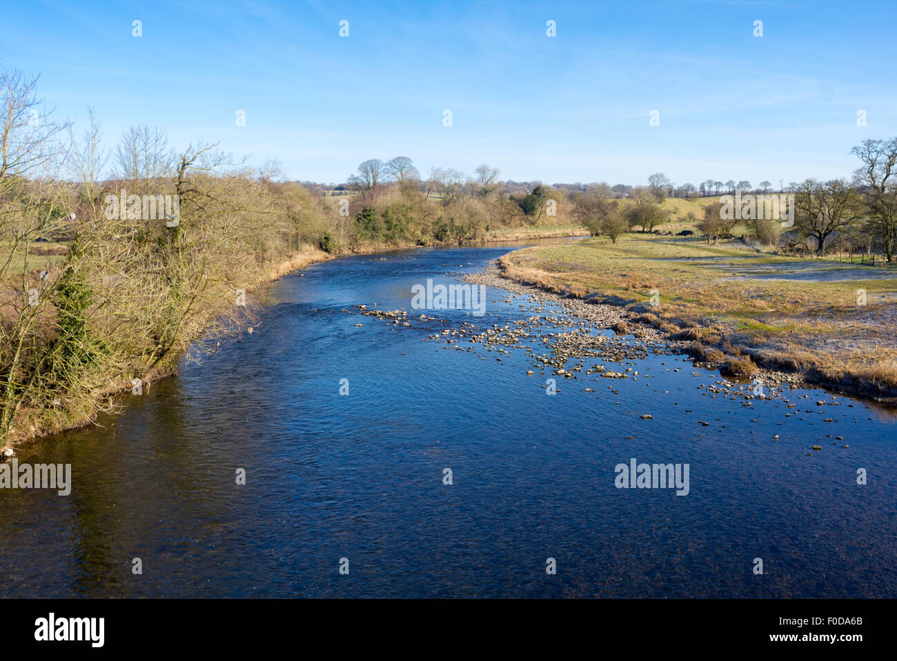 River Ribble near Clitheroe - Stock Image