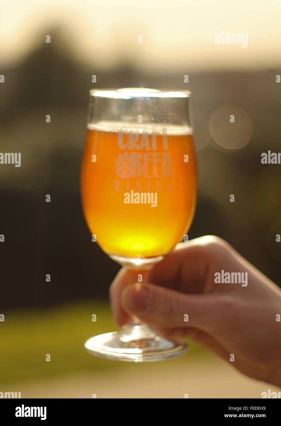 Home brewed all-grain IPA - Stock Image