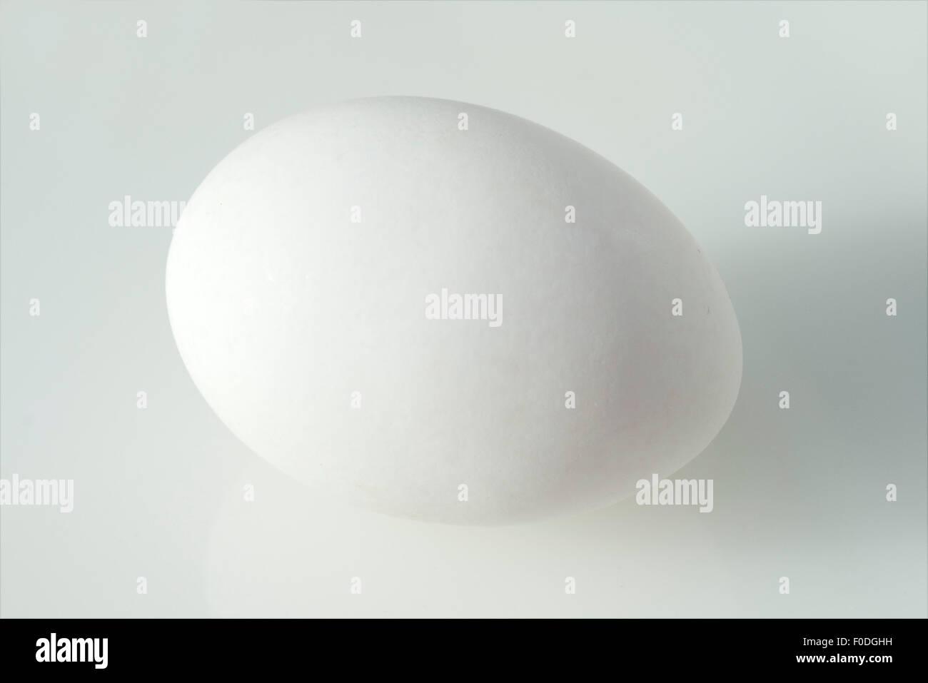 Weisses; Ei; Huehnerei; - Stock Image