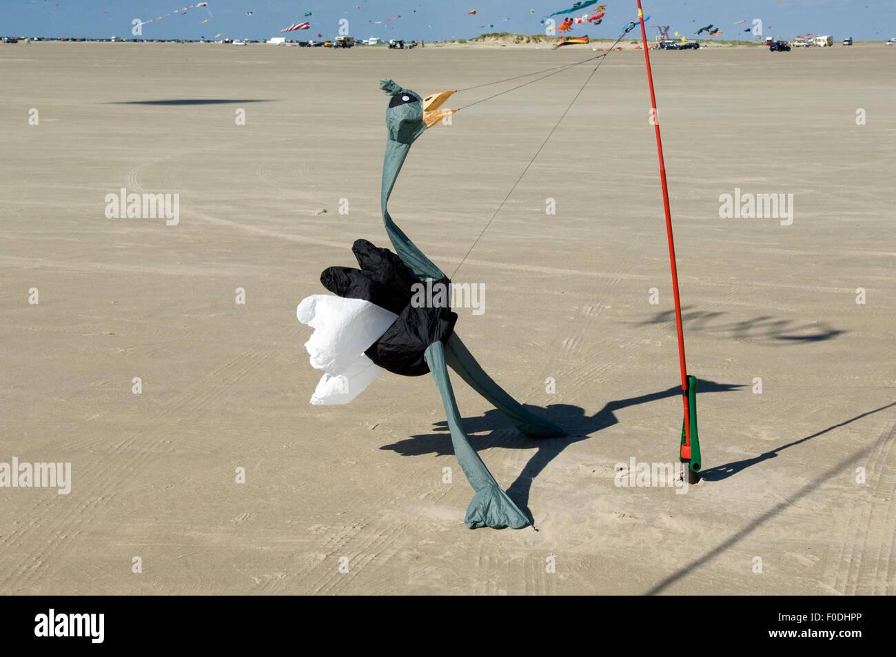 Bodenwindspiele, Vogel Strauss - Stock Image