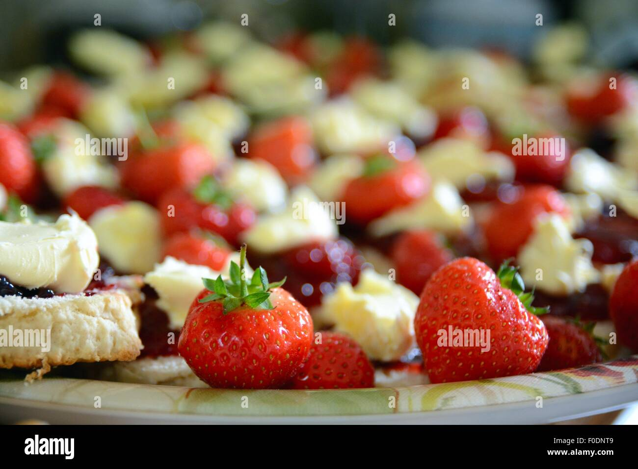 Strawberries and clotted cream. Party food. - Stock Image