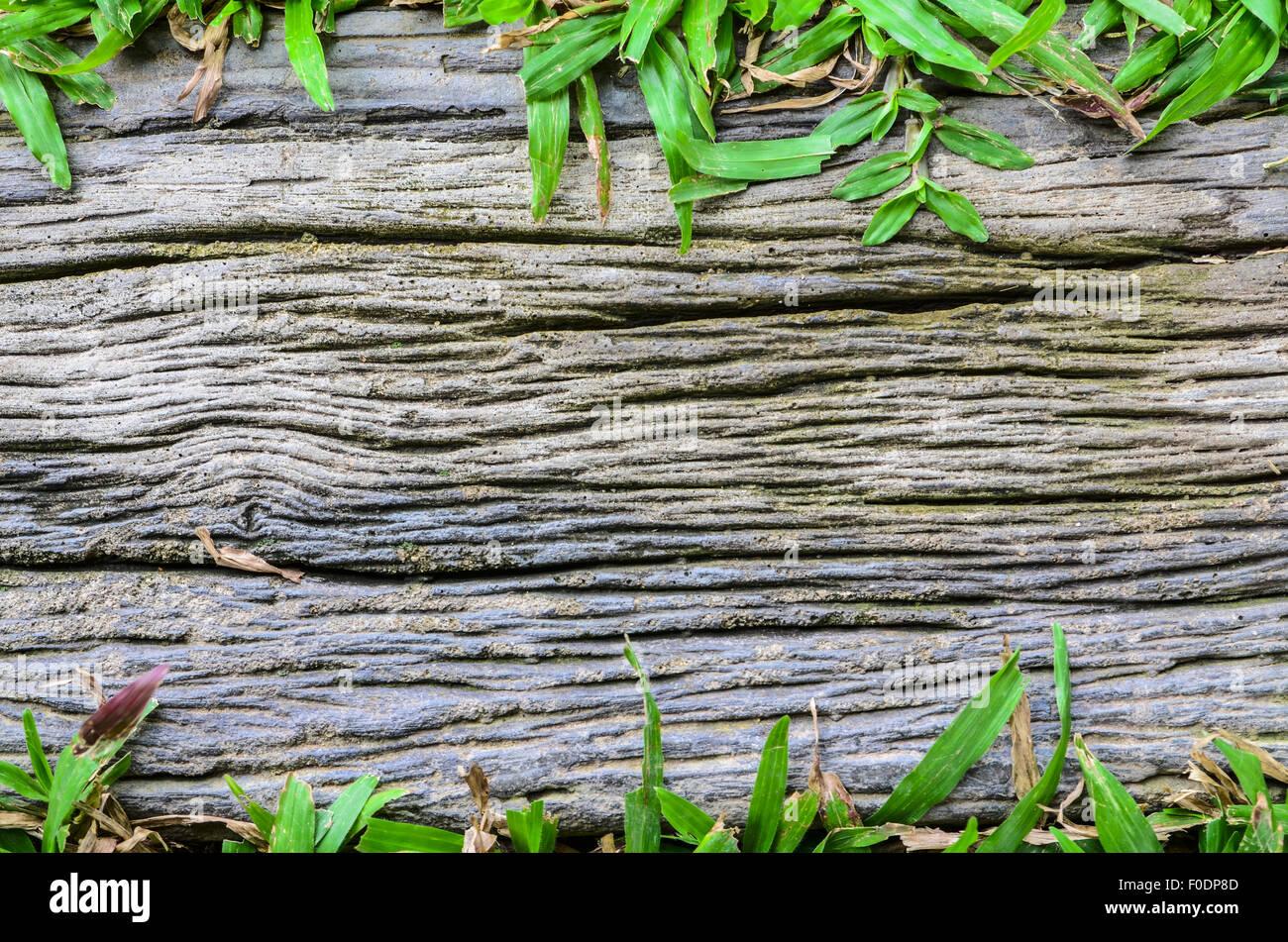 Wood surfaces background Stock Photo