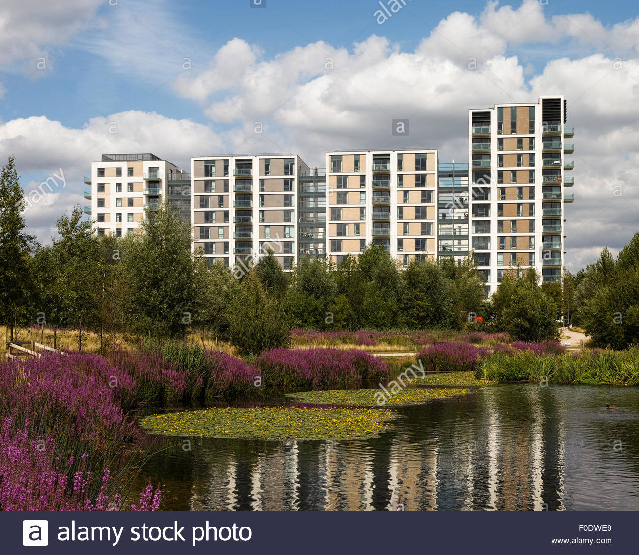 Olympic Village Apartments: East Village Stratford London Stock Photos & East Village