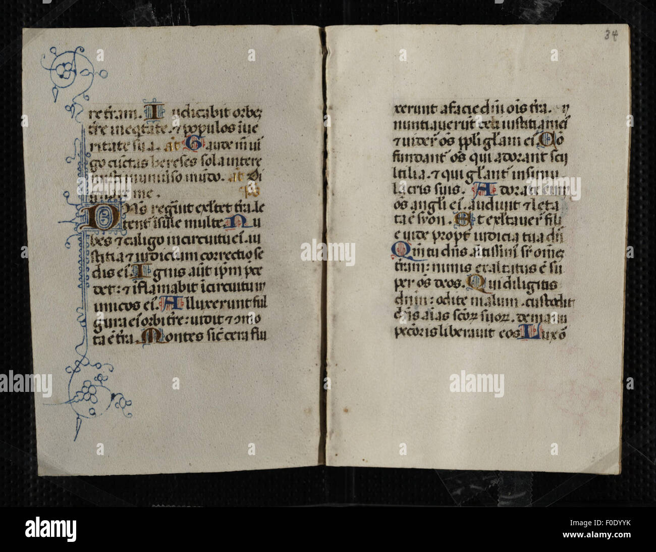 Codex Pollick (Book of Hours) - Stock Image
