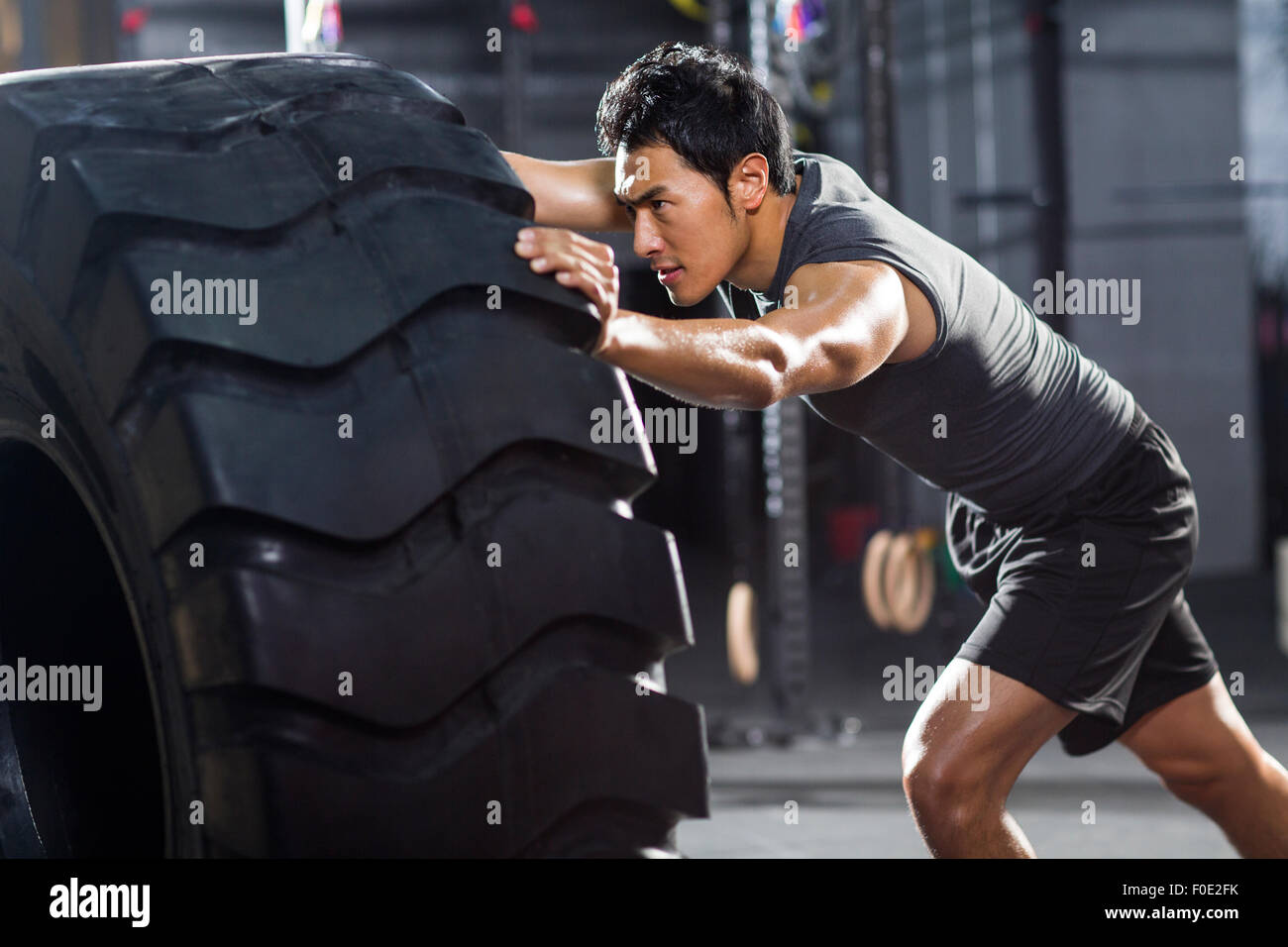 Young man pushing large tire in crossfit gym - Stock Image
