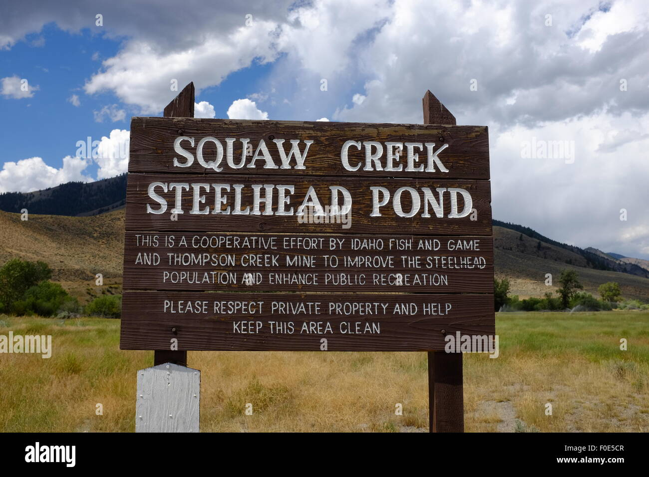 The Steelhead Pond near Clayton, Idaho - Stock Image