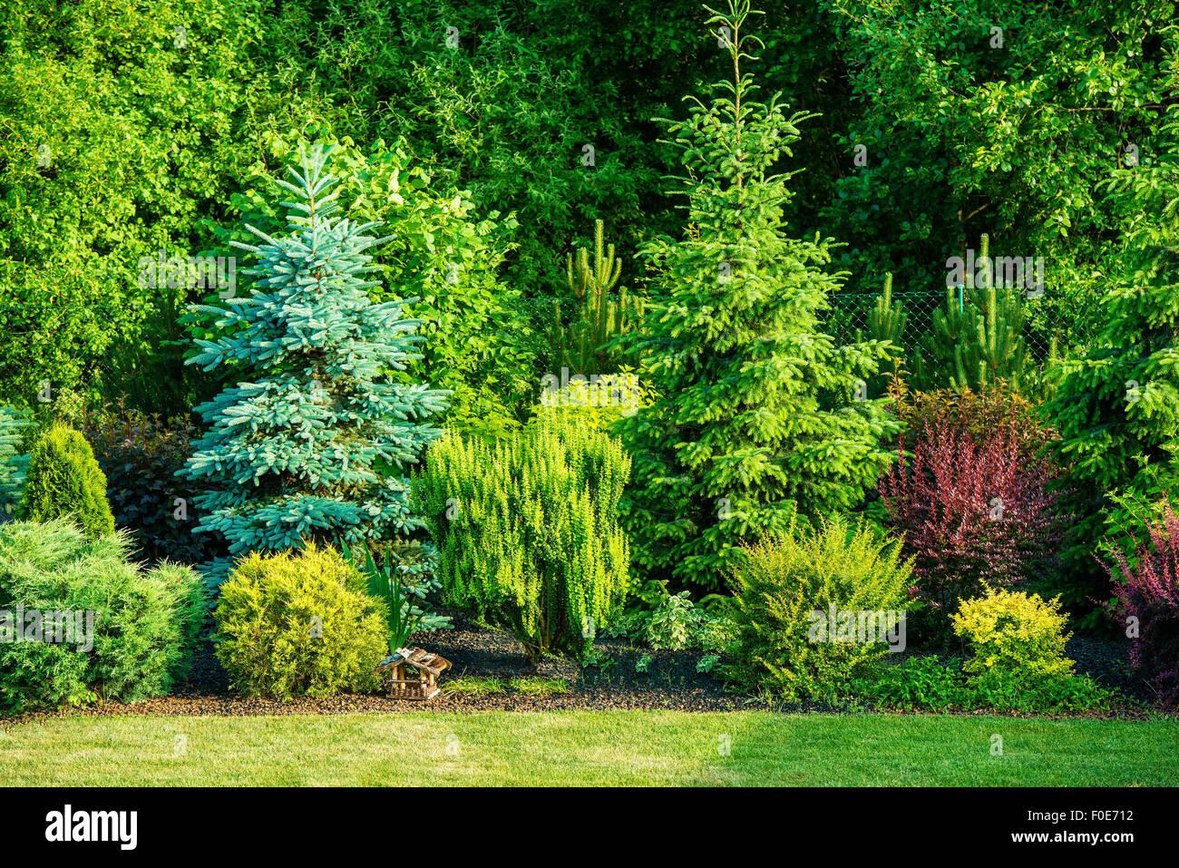 Backyard Garden With Various of Tree Species. Gardening Theme. - Stock Image