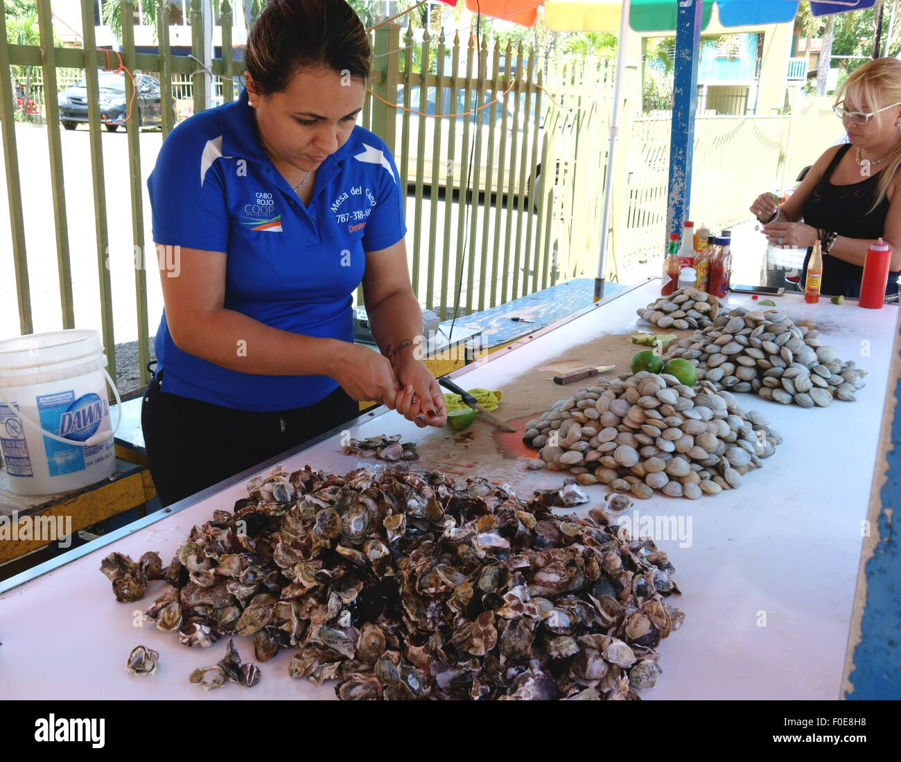 Fresh oysters and clams for sale in Boqueron Puerto Rico ... - photo#16