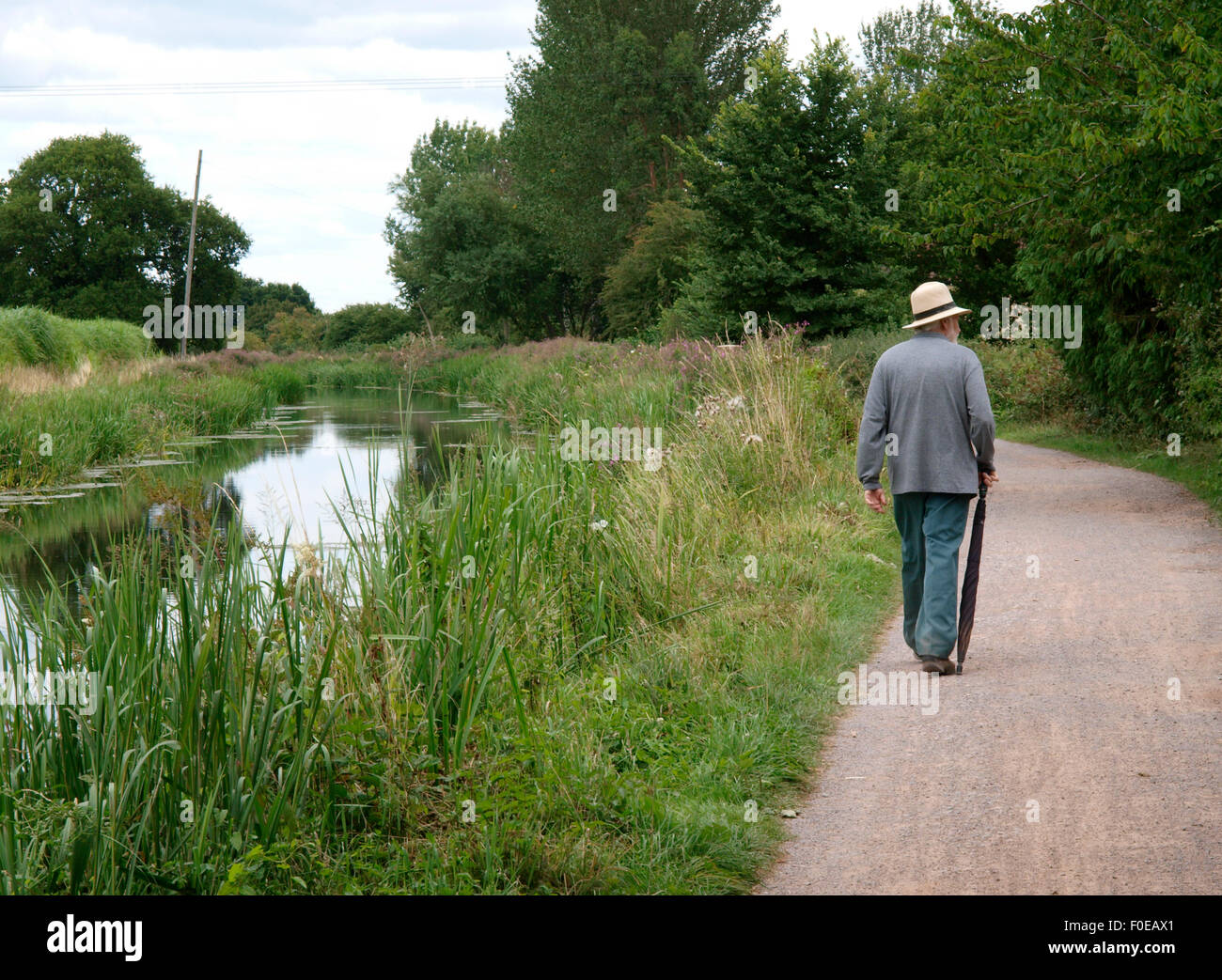 Senior citizen strolling along the towpath of the Bridgwater and Taunton Canal, Somerset, UK - Stock Image