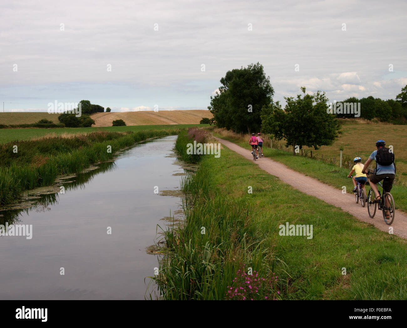 Family cycling along the towpath on the Bridgwater and Taunton Canal, Somerset, UK - Stock Image