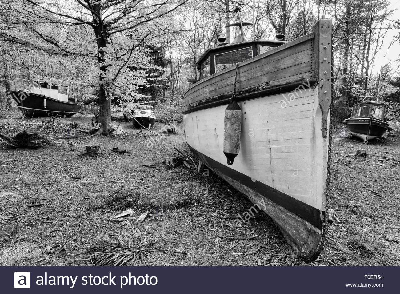 The abandoned fishing boats at Leigh Woods, Bristol. - Stock Image