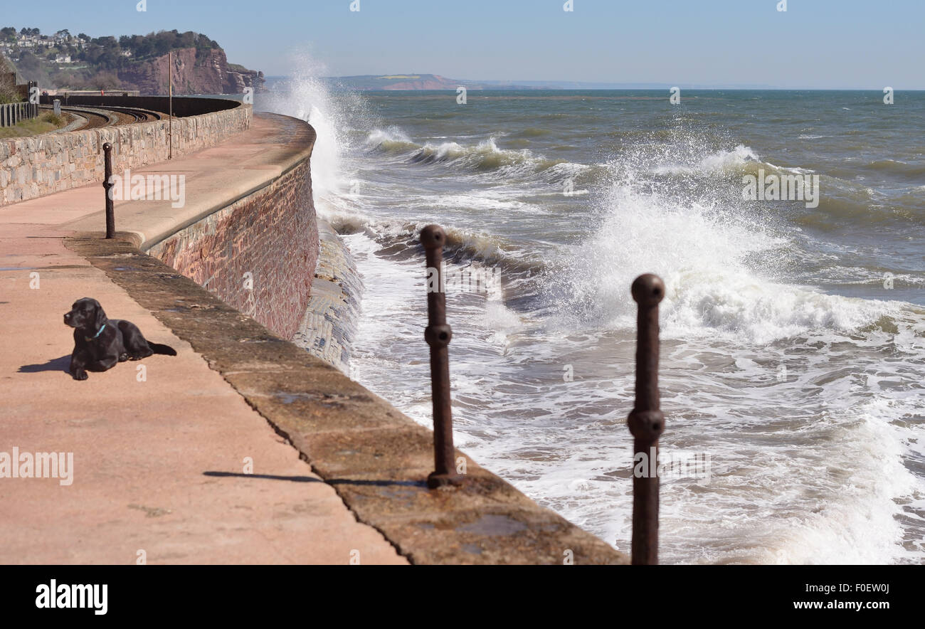 Waves crashing against the sea wall. Looking towards Holcombe and Hole Head. Stock Photo