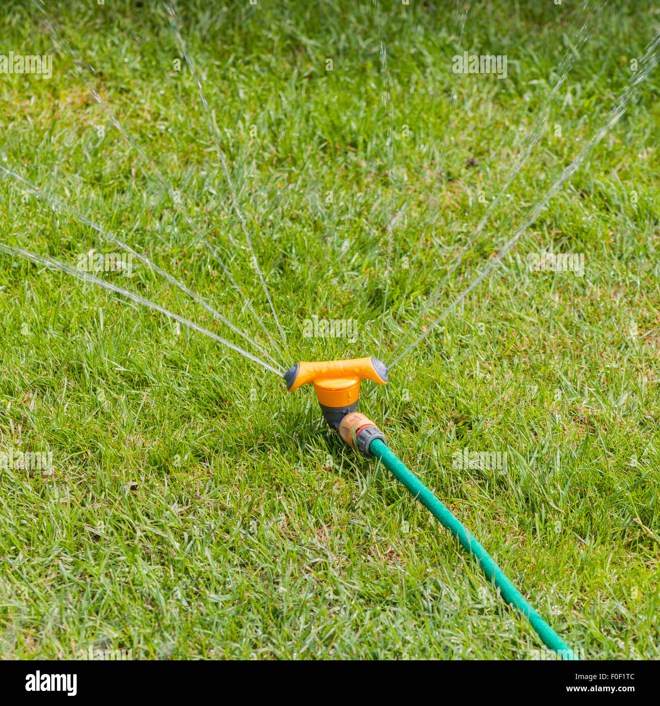 A sprinkler watering a garden lawn in the Uk - Stock Image