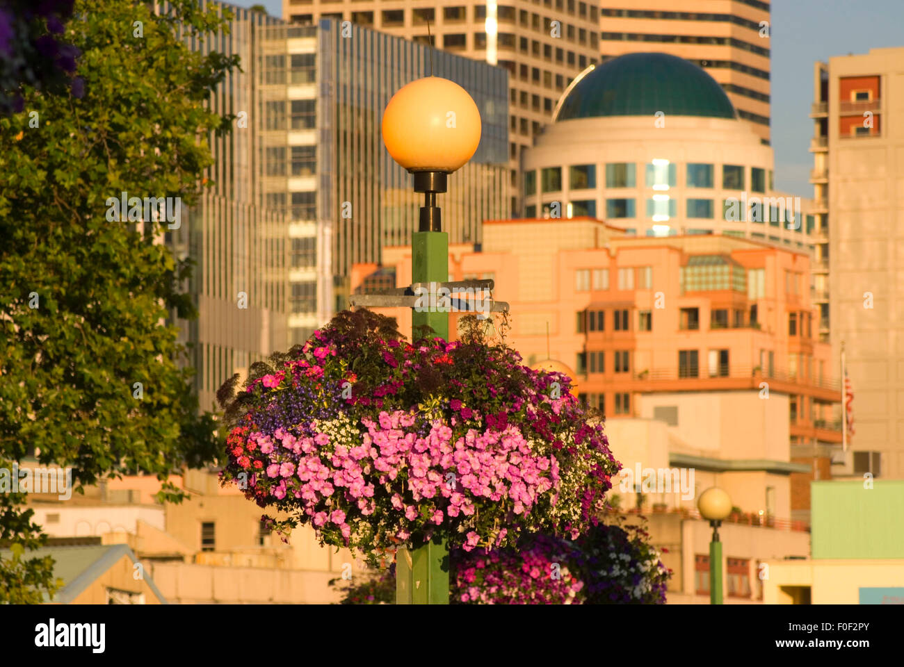 Planter, Victor Steinbrueck Park, Seattle, Washington - Stock Image