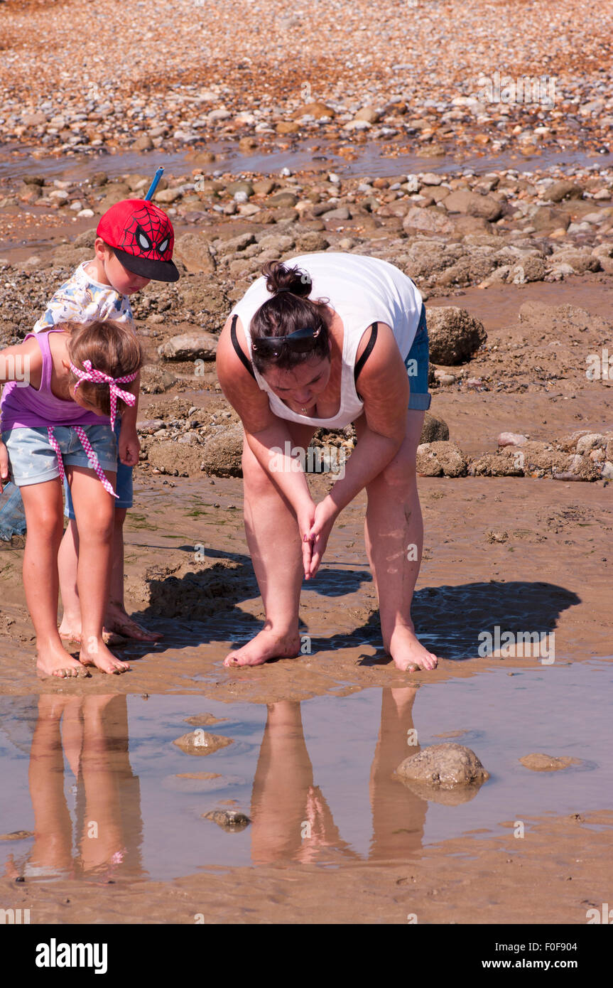 Family Looking Into A Rockpool - Stock Image