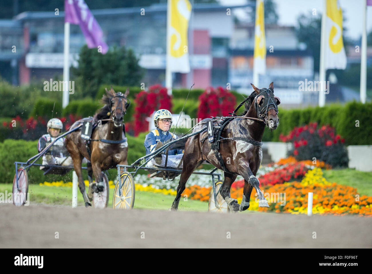 Angle of Attack with Stefan Melander wins V86 race #4 at Solvalla horse racing track on August 5, 2015 - Stock Image