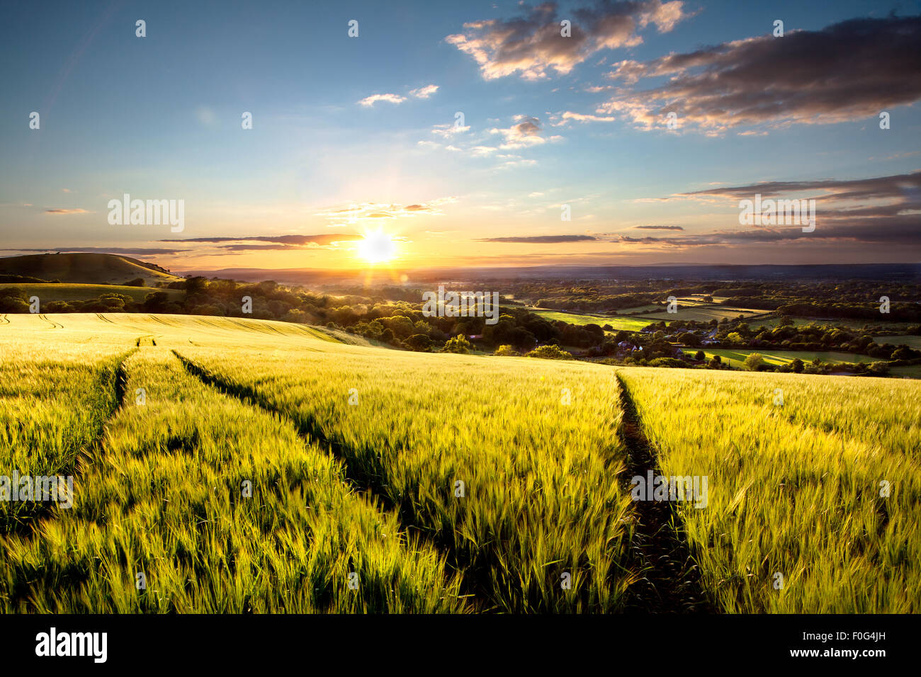 The South Downs Clayton at sunset - Stock Image