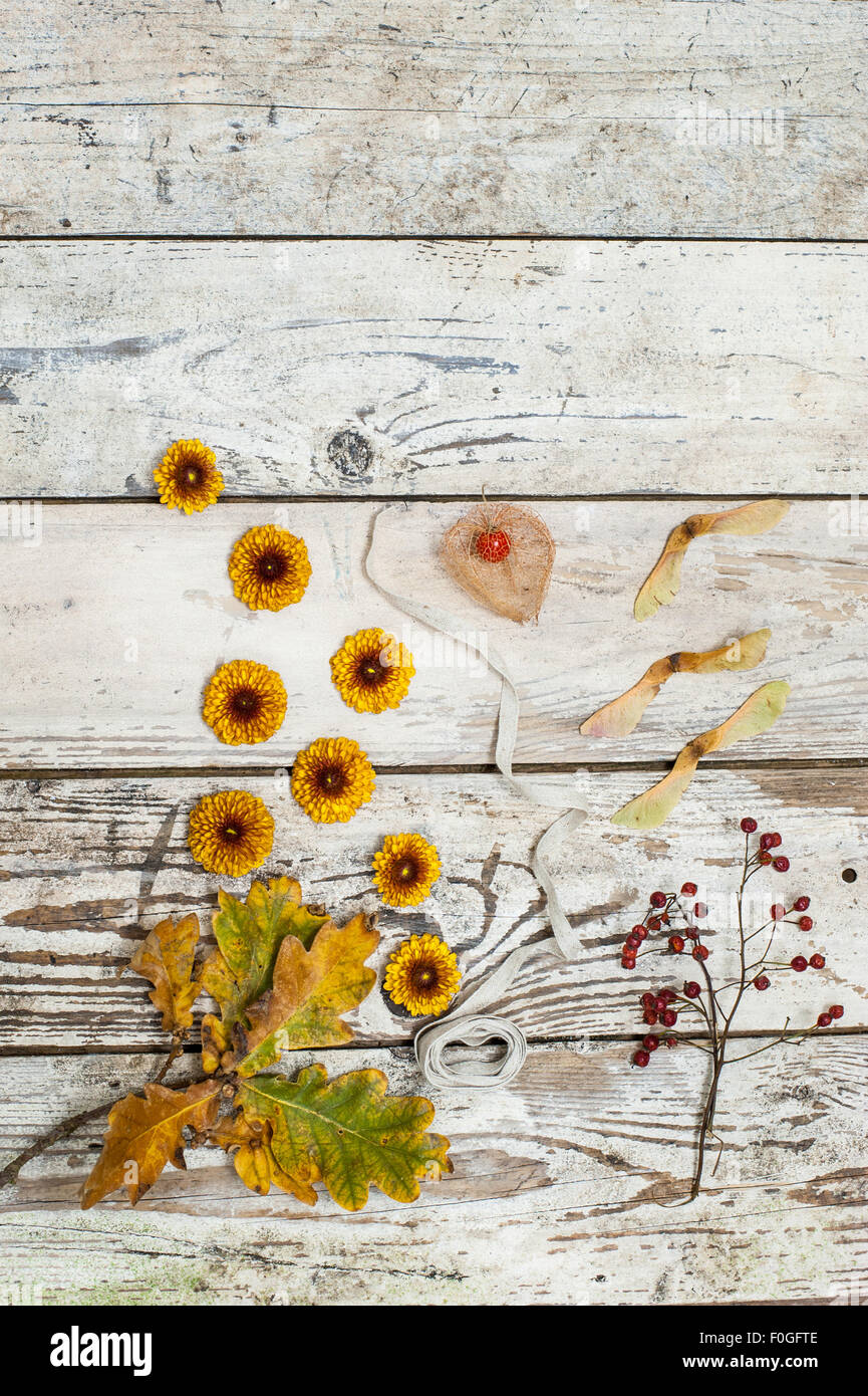 autumn flowers, leaves and seeds on rustic wooden surface - Stock Image