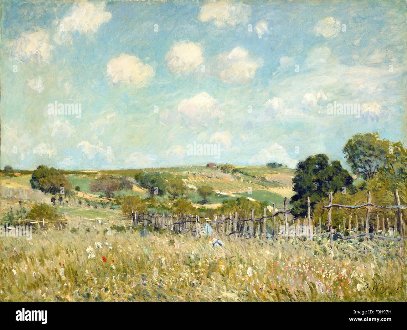 Alfred Sisley - Meadow - Stock Image